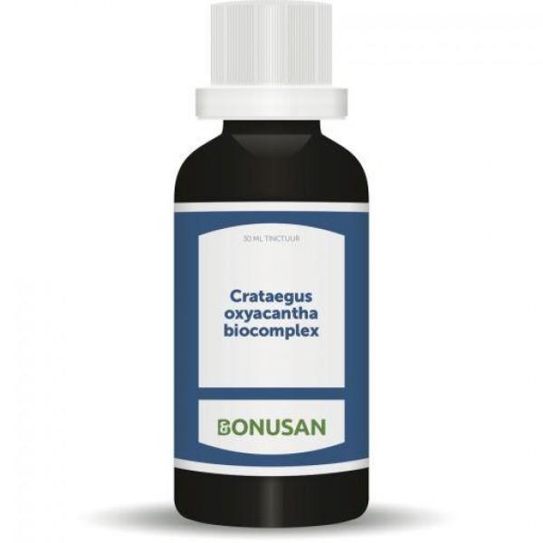 Crataegus Oxyacantha Bonusan