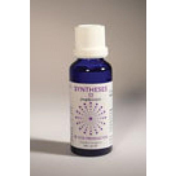 Syntheses 12 jeugdpuistjes vita