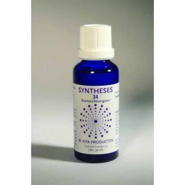 Syntheses 34 evenwichtsorgaan vita