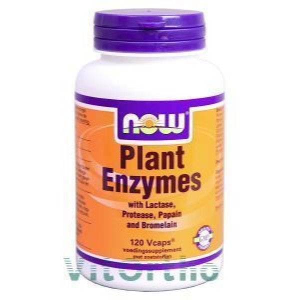Plant Enzymes NOW 120vc-0