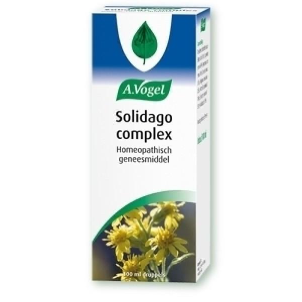 Solidago complex Vogel