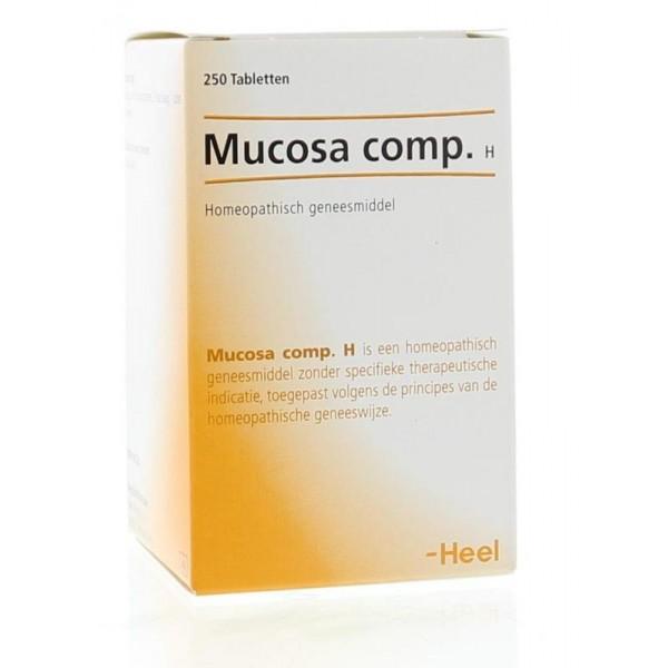 Mucosa compositum Heel 250tabl