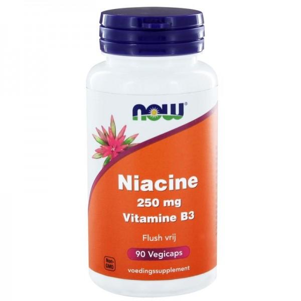 Niacine flush free 250mg NOW 90cap