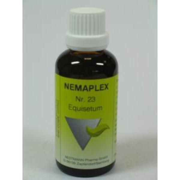 Equisetum 23 Nemaplex