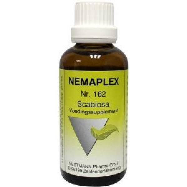Scabiosa 162 Nemaplex