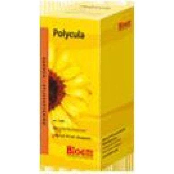 Polycula Bloem
