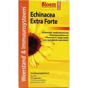 Echinacea extra forte weerstand Bloem