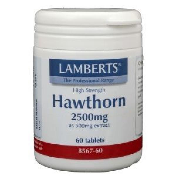 Crataegus (hawthorn) lamberts