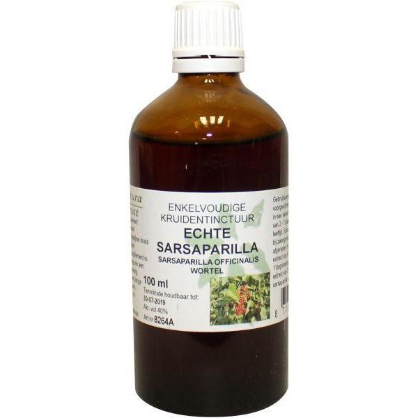 Smilax officinalis / echte sarsaparilla