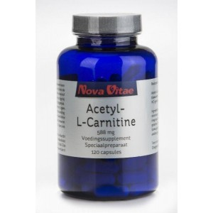 Acetyl l carnitine 500 mg