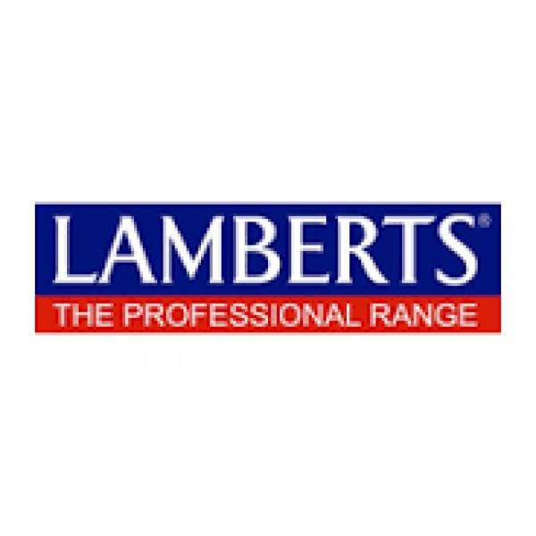 Artisjok 8000 Lamberts