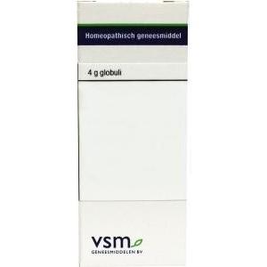 VSM Caulophyllum thalictroides 200K