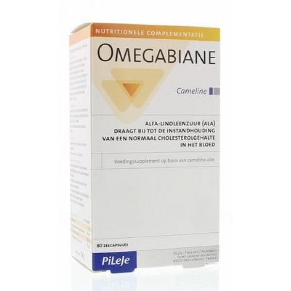 Omegabiane cameline Pileje