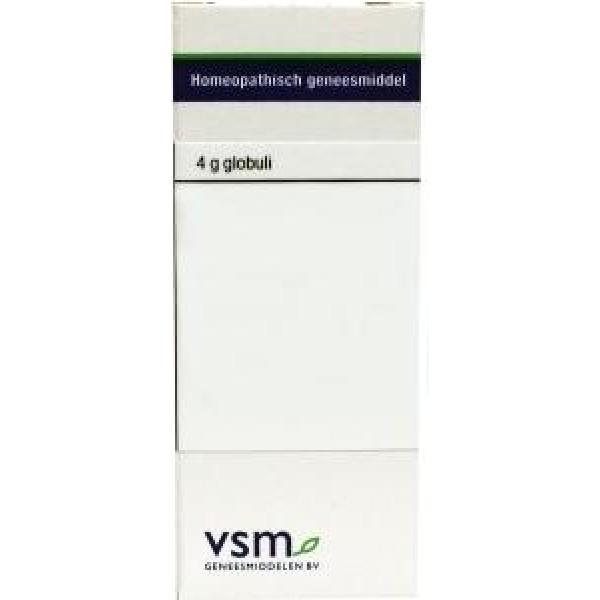 VSM Zincum metallicum C200
