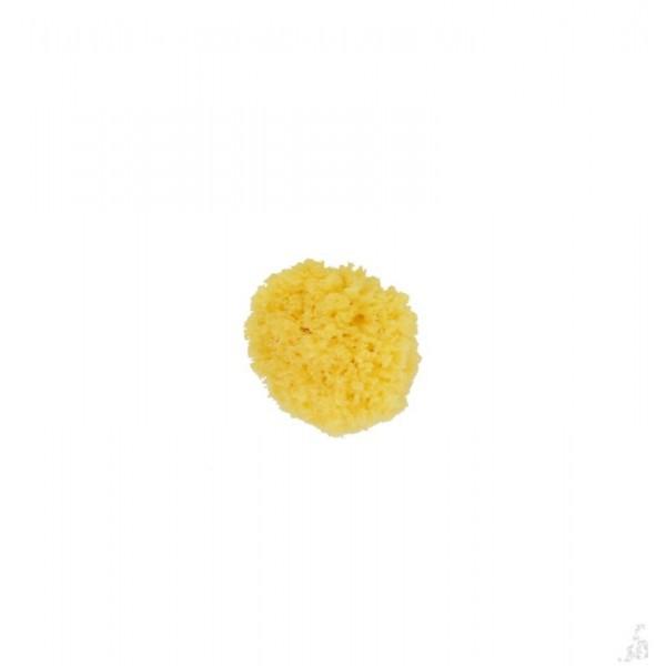 Natuur spons carribbean small